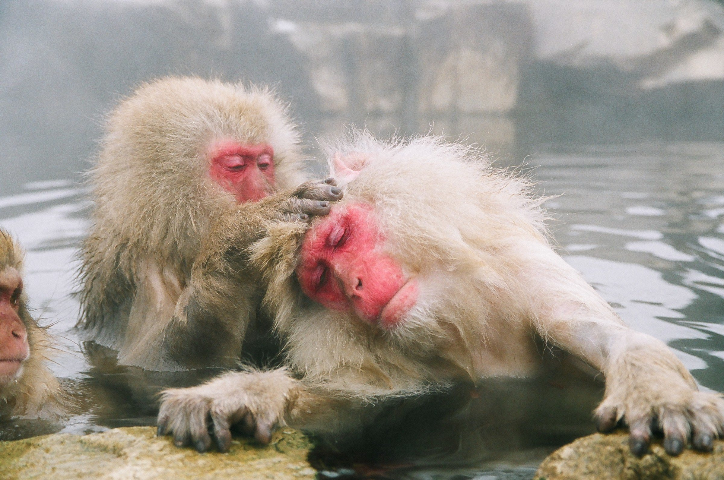 Relaxing hot springs