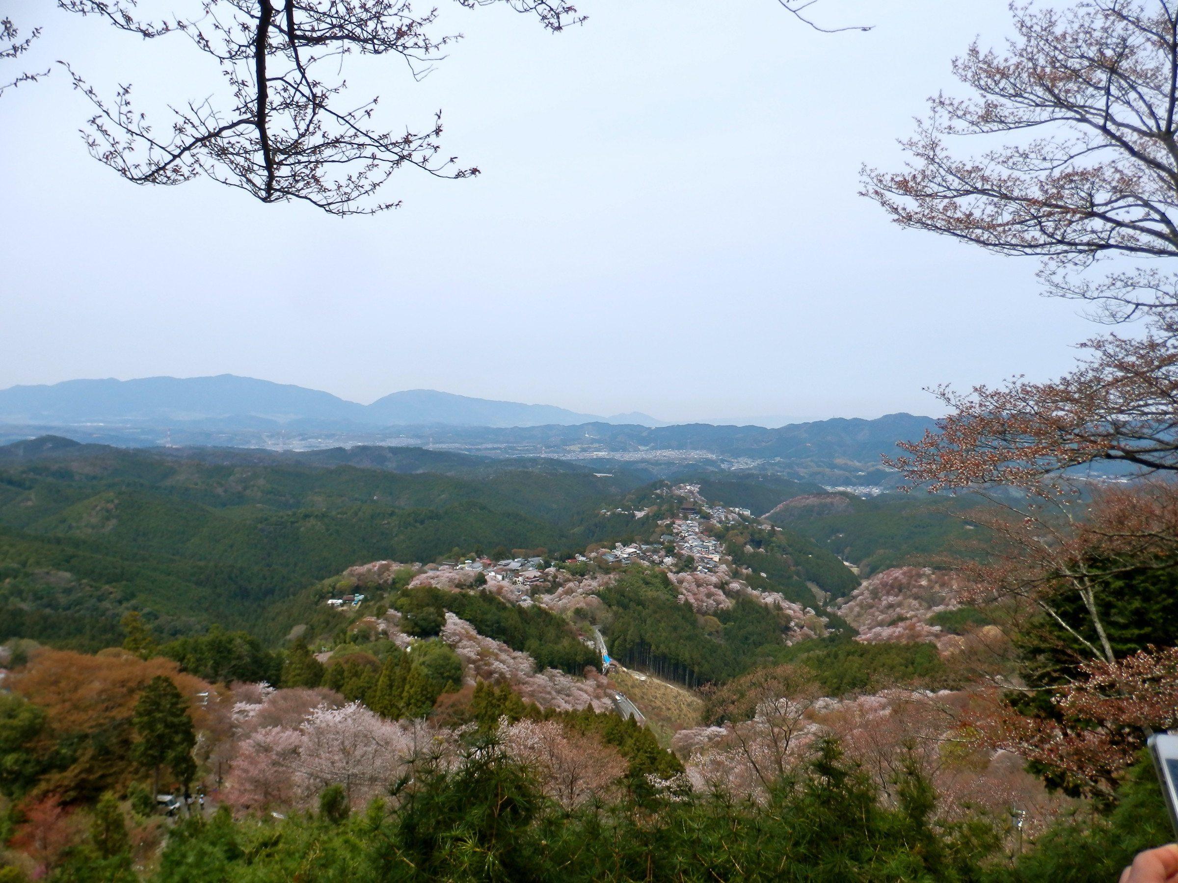 View from the Hanayagura Viewpoint