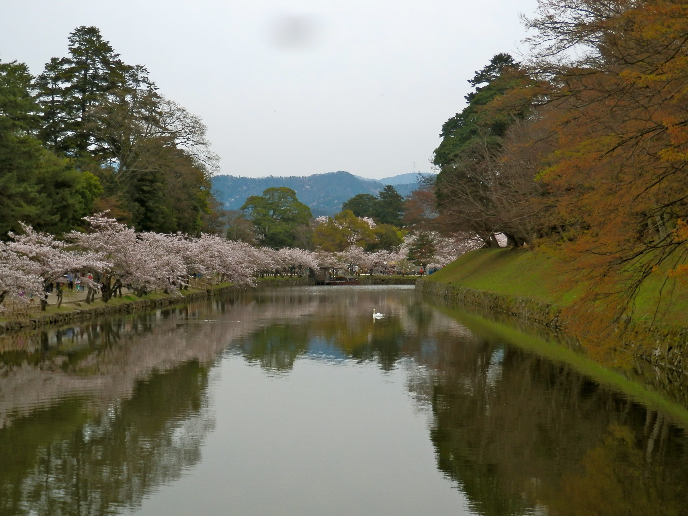 Hikone Castle Moat