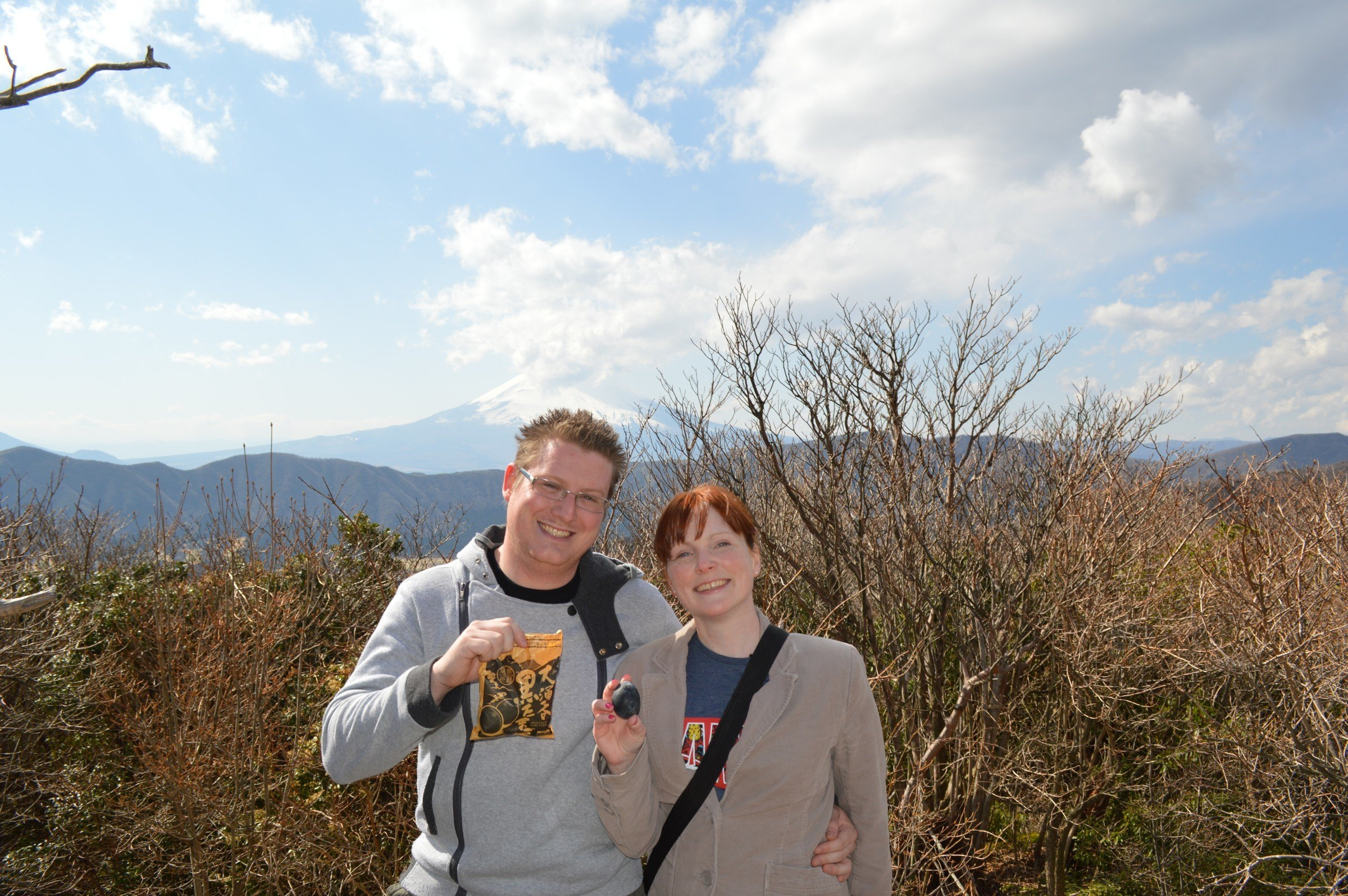 Mount Fuji Gallery