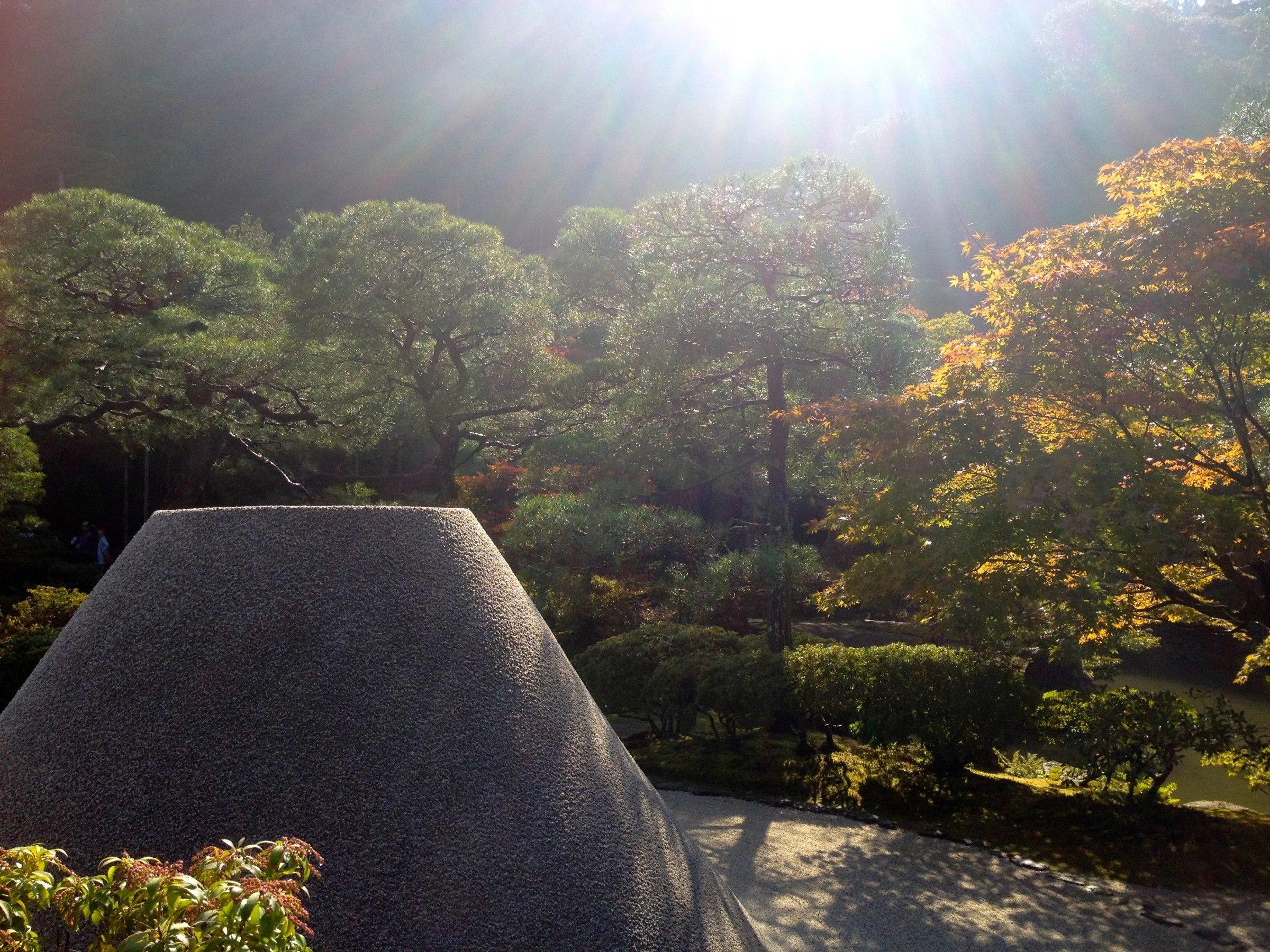 Sun and Gardens
