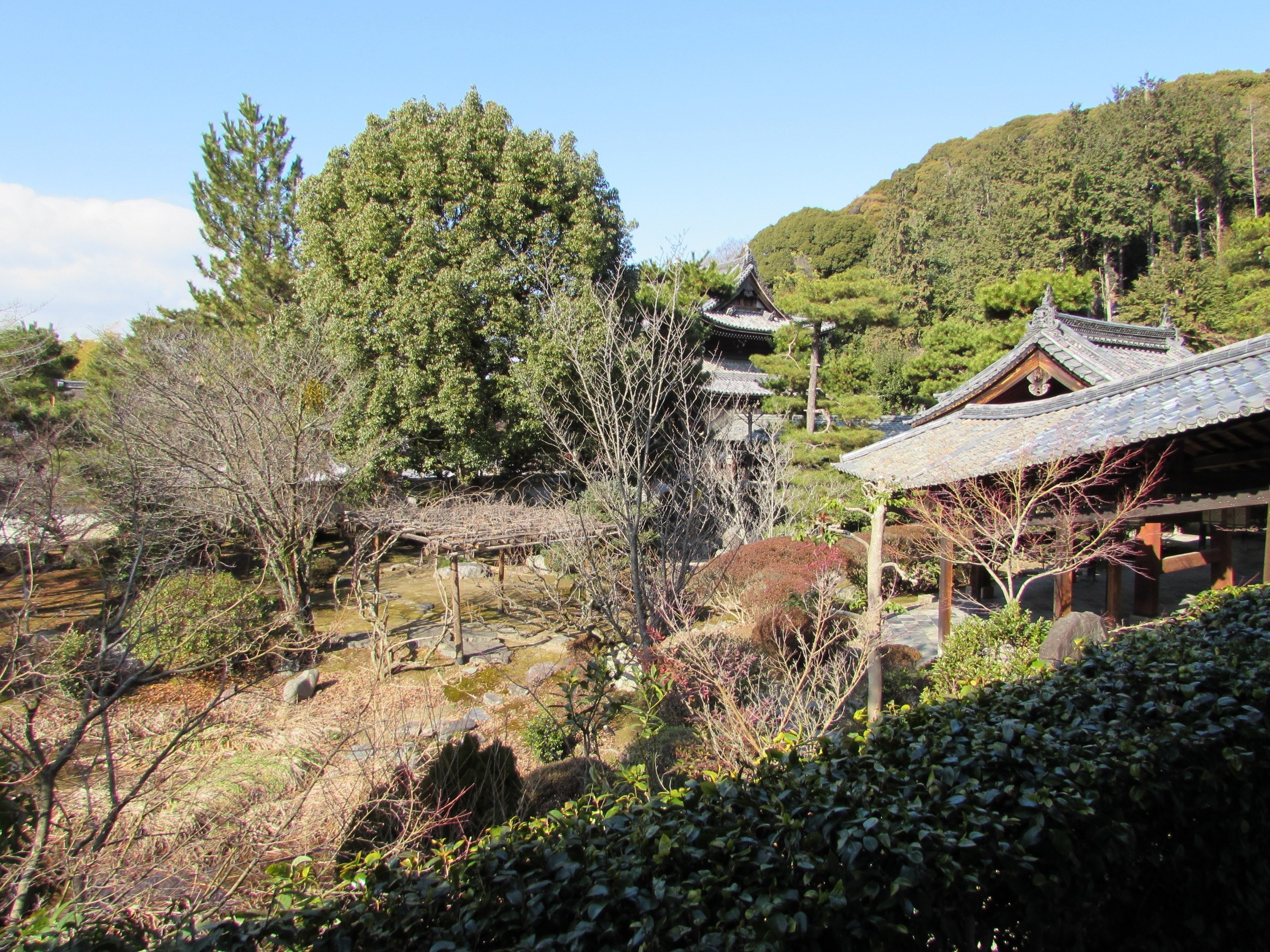 All in all, Mampuku-ji is highly worth a visit. The grounds are large and extensive, and the borrowed scenery is beautiful. Another huge bonus is that compared to the large crowds that are drawn to the major temples in central Kyoto, you're likely to have this wonderful site almost to yourself!