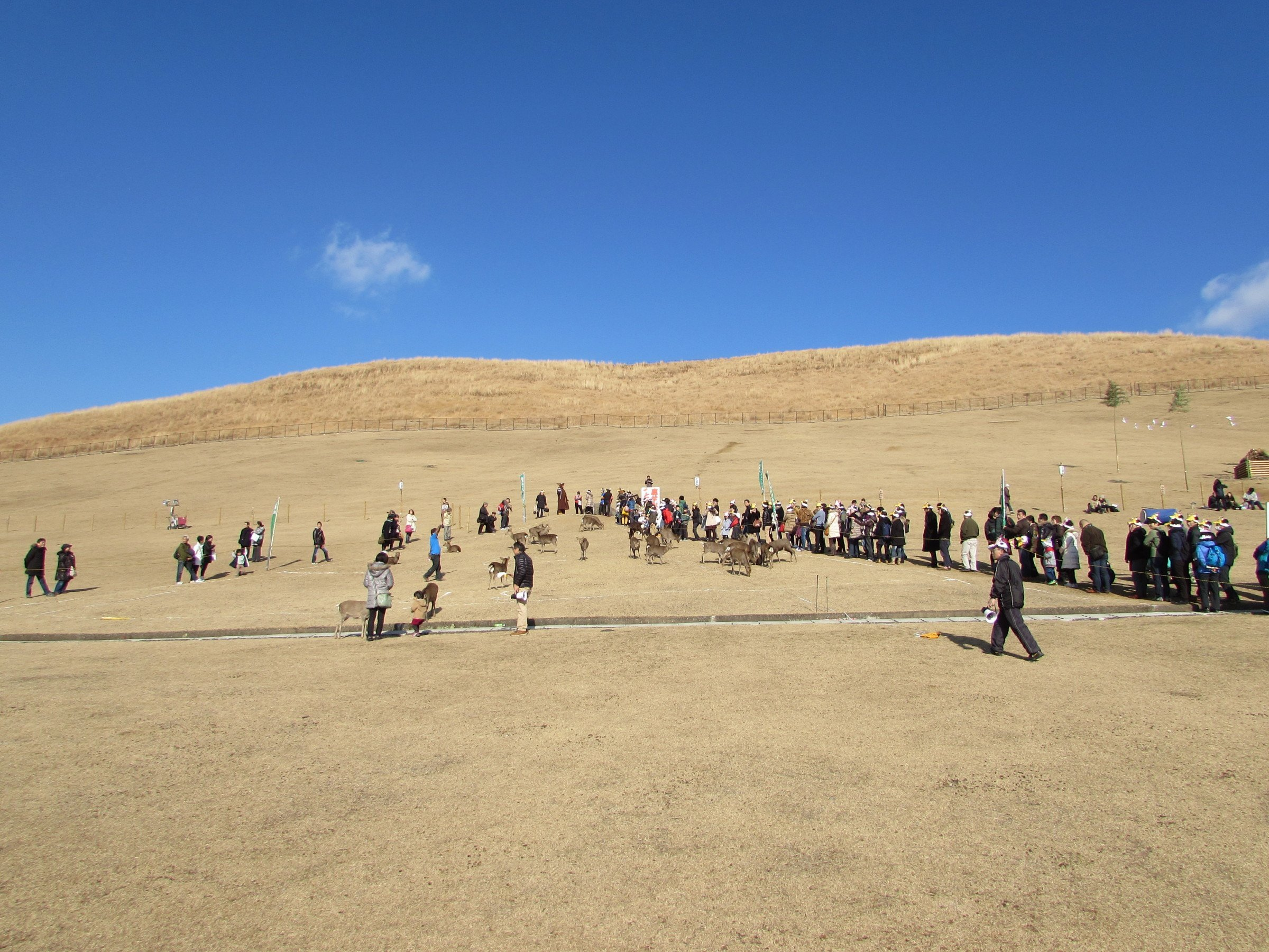 After taking in some of Nara's year-round attractions. I headed over to Mt. Wakakusa (more of a very large hill, really!) to watch one of the festivals rather unique events...