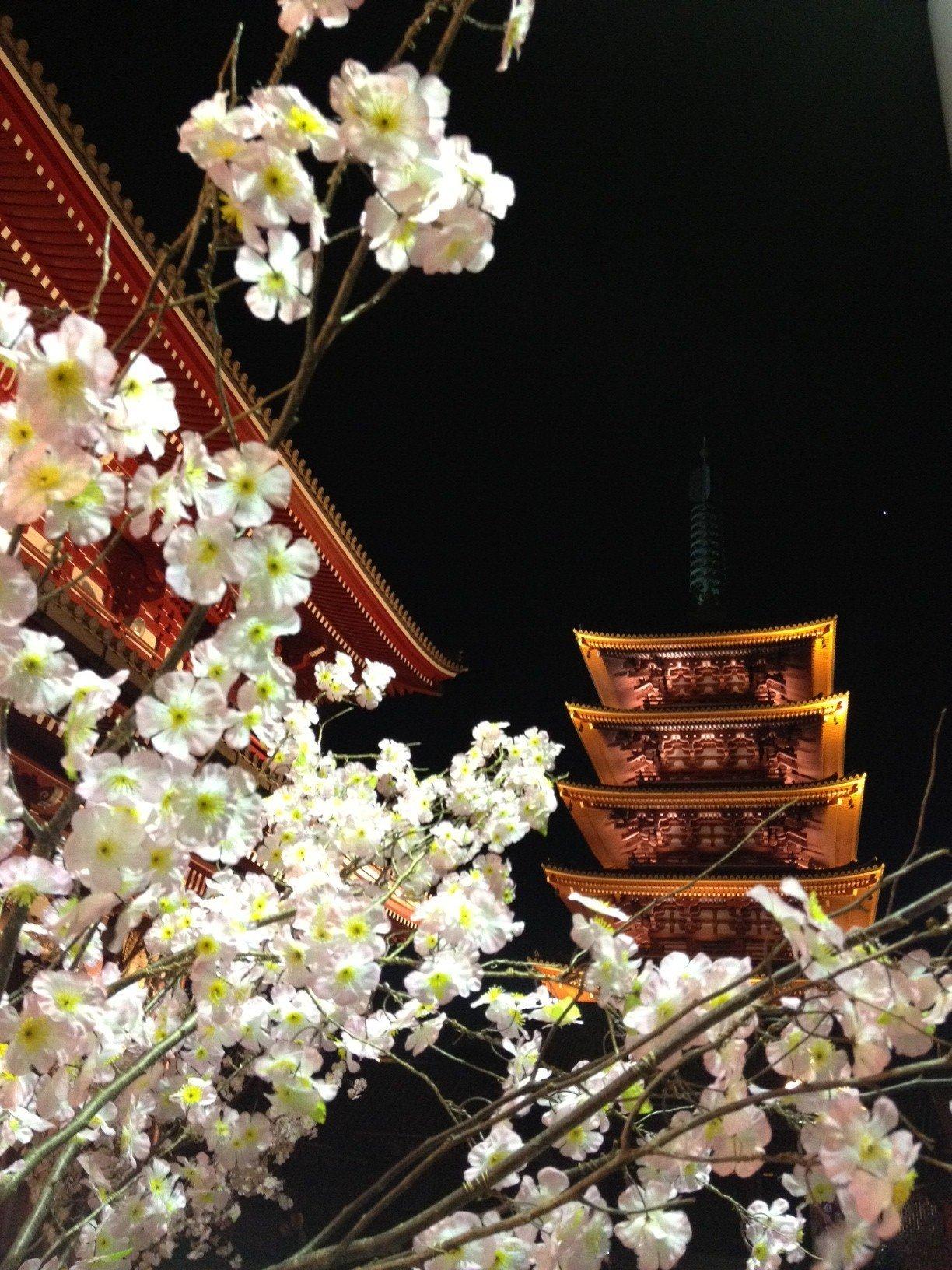 Senso-ji pagoda at night