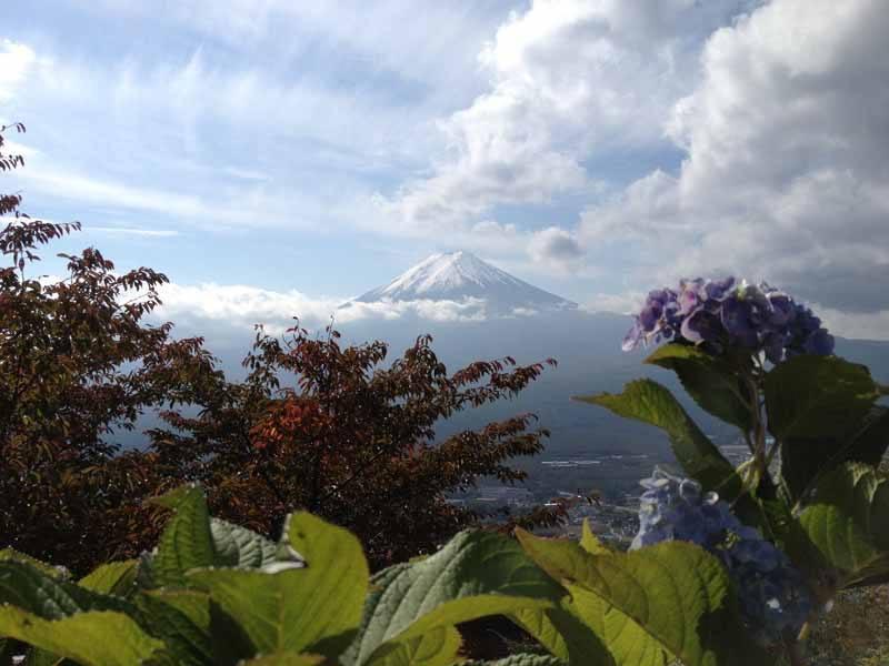 A rare sighting of Mount Fuji