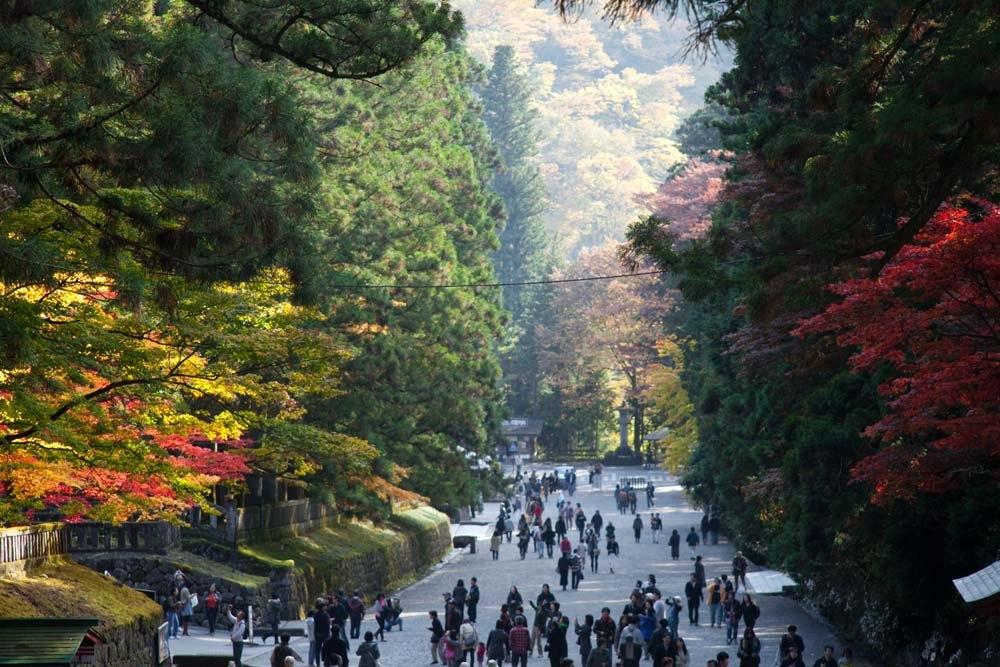 Stunning Nikko autumn leaves in Japan