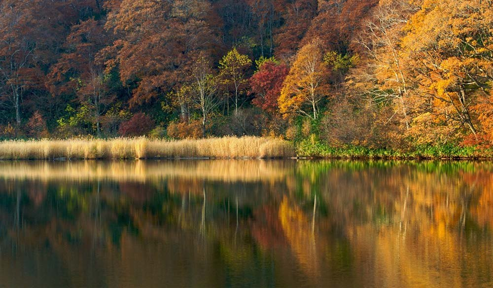 Lovely Onuma Pond in the Hachimantai Mountains