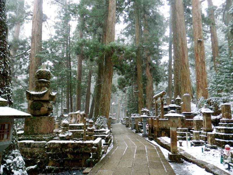How not to visit Mount Koya: A step-by-step guide ...