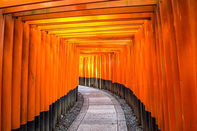 The ten thousand red gates of Fushimi Inari