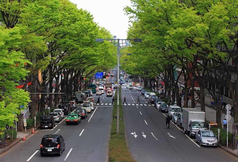 Tokyo's Omotesando