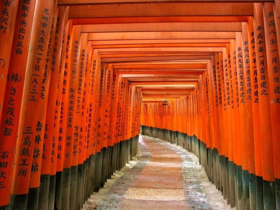 Takeshi Suzuki Kyoto Guide