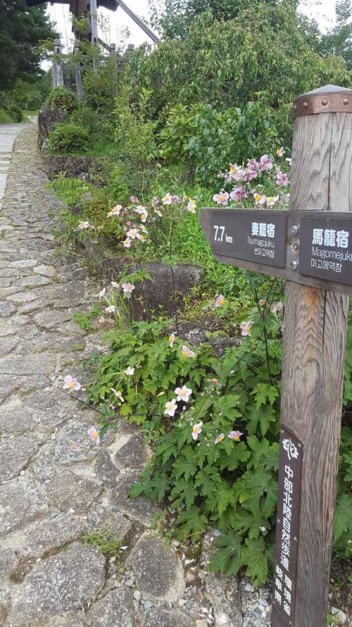 Starting out on the Nakasendo Way