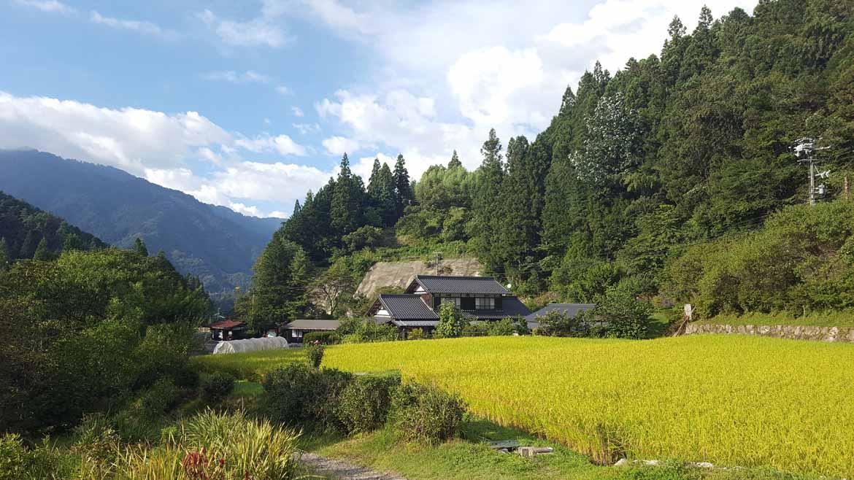 Approaching Tsumago
