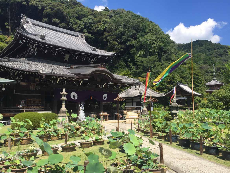 Mimuroto-ji