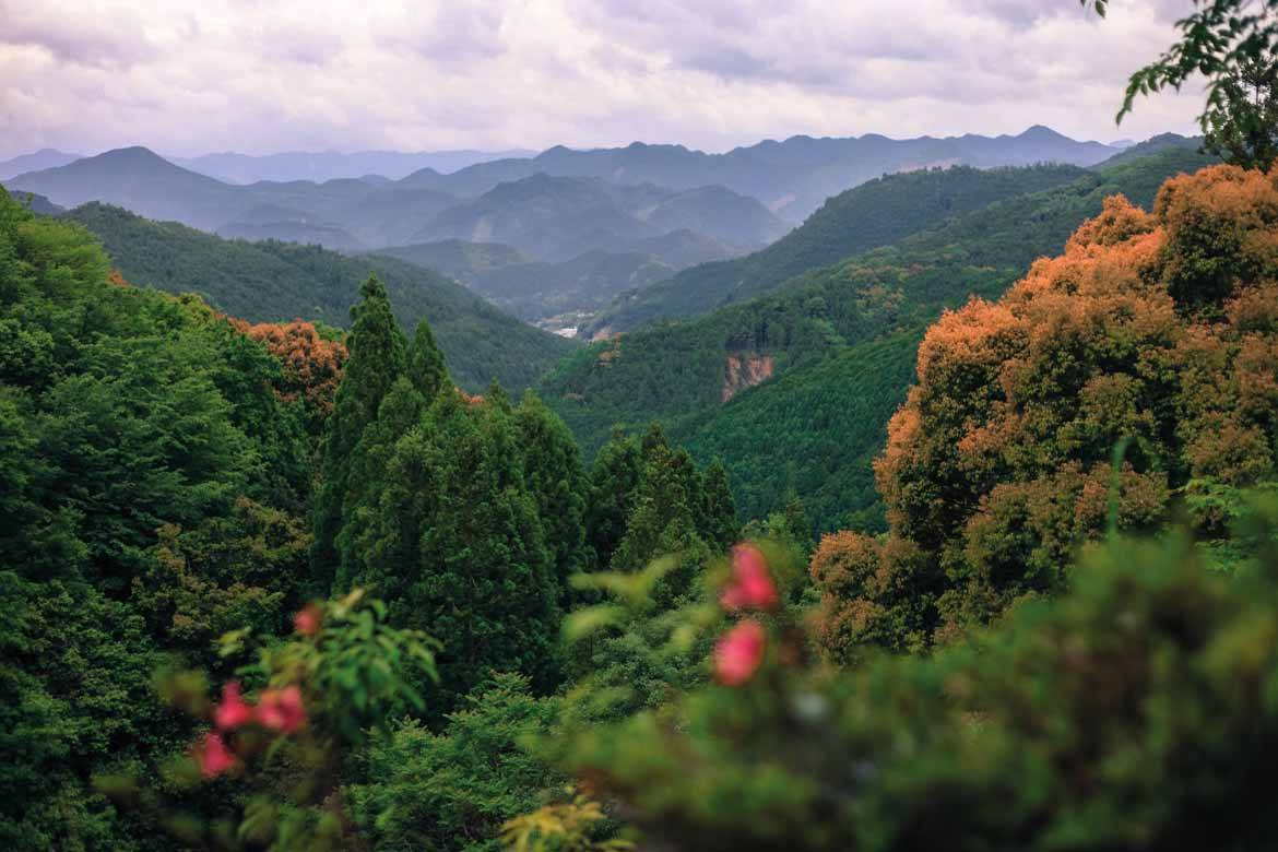 Spectacular views over the landscape of the Kumano Kodo