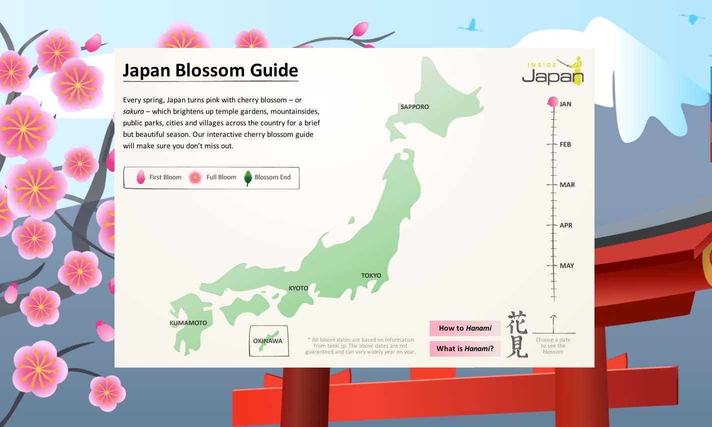 Cherry blossom - Japanese Culture | Inside Japan Tours