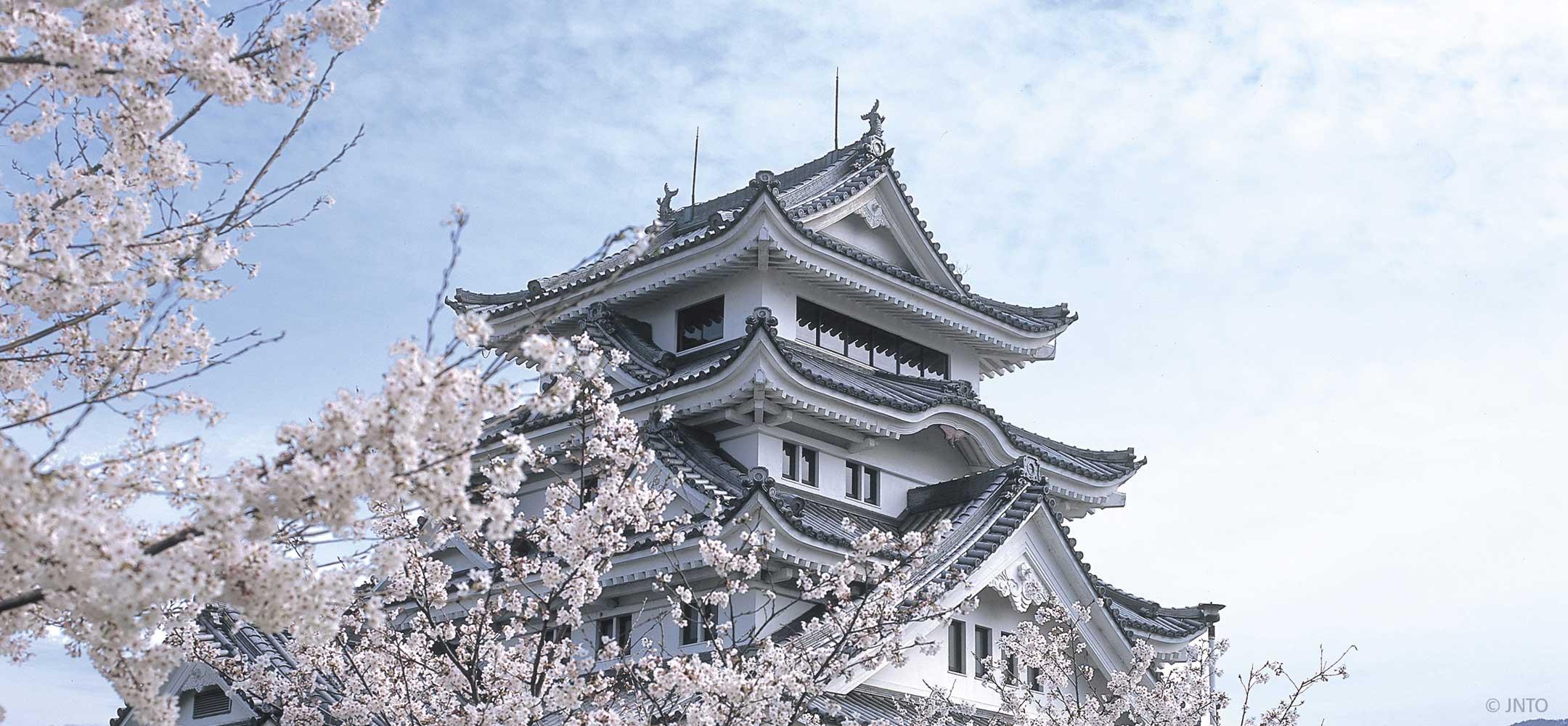 Tokushima Shikoku Inside Japan Tours