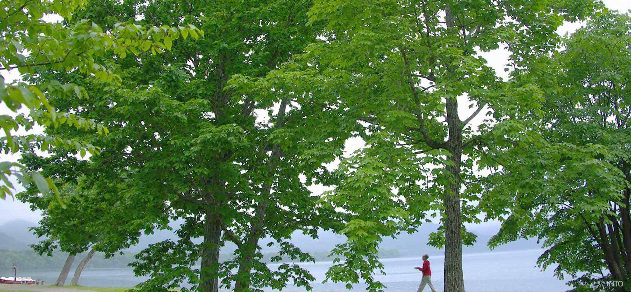 Lake Kussharo Hokkaido Inside Japan Tours