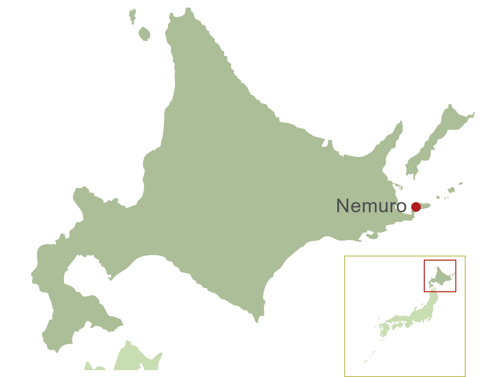 Nemuro Map