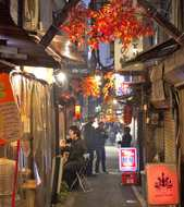 Golden Gai night tour