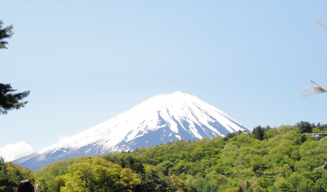 Day trip to Mount Fuji in a wheelchair accessible vehicle