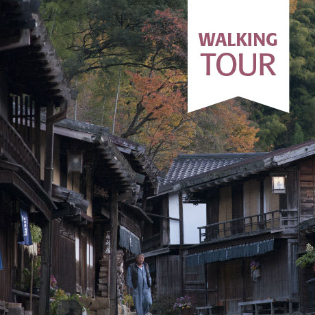 Walking the Nakasendo & Beyond