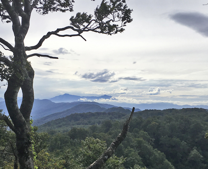 Lace up your hiking boots for a three-day hike along the Sekida Mountain's Shin-Etsu Trail.
