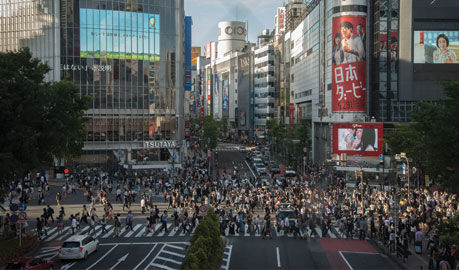 Business Studies and Economics in Tokyo Tour   Inside Japan